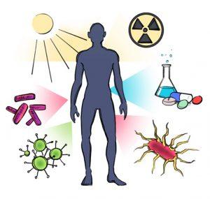 Conquer Auto Immune Disease